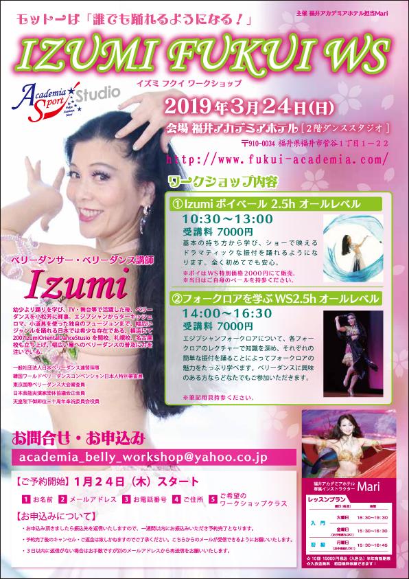 IzumiWS in Fukuiフライヤー(A4)